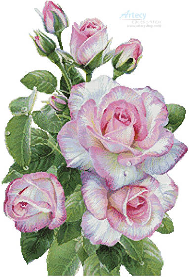 cross stitch pattern Morning Roses