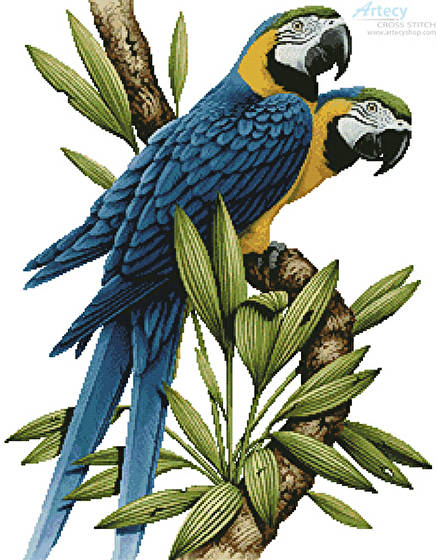 cross stitch pattern Majestic Macaws