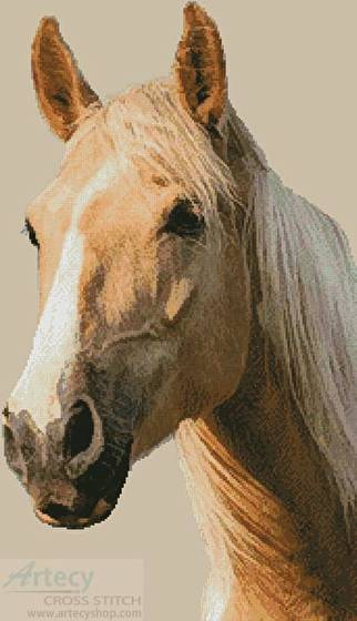 cross stitch pattern Palomino Horse