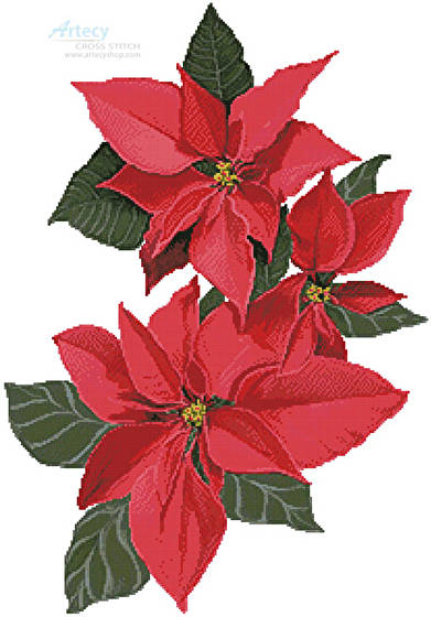 cross stitch pattern Poinsettia Flowers