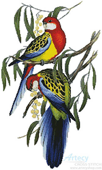 cross stitch pattern Rosehill Parakeets