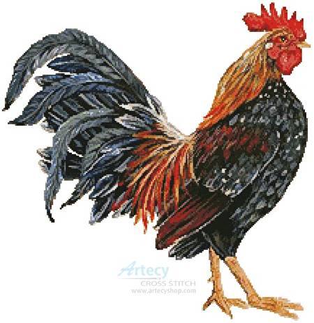 cross stitch pattern Rooster 4