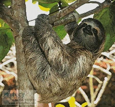 cross stitch pattern Three Toed Sloth
