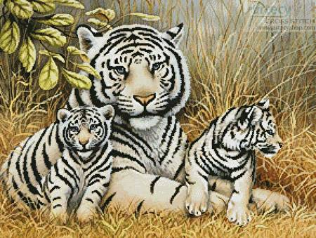 cross stitch pattern White Tiger and Cubs