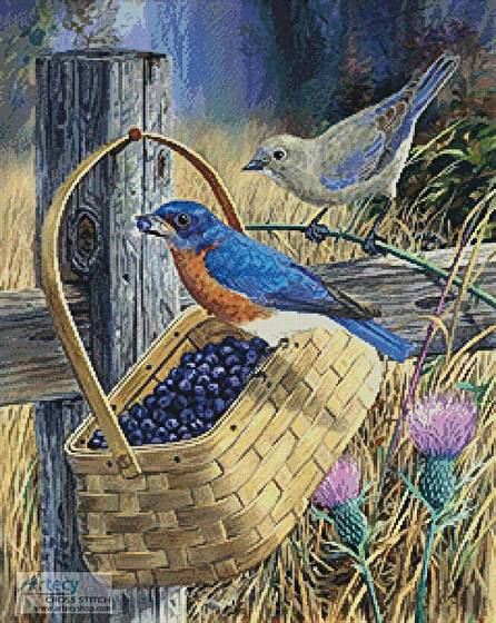 cross stitch pattern Blue Bandit