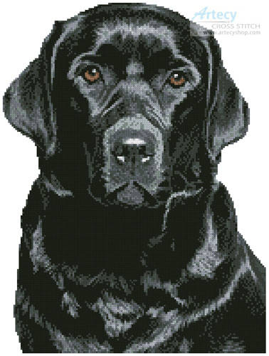cross stitch pattern Black Labrador