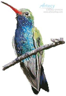 cross stitch pattern Broad-billed Hummingbird
