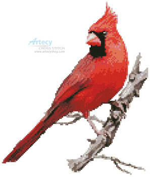 cross stitch pattern Cardinal