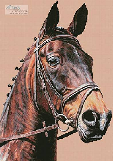 cross stitch pattern Horse Portrait