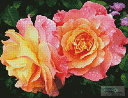 cross stitch pattern Roses in a Garden