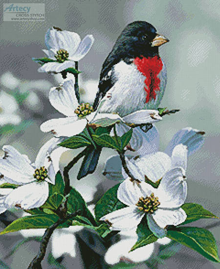 cross stitch pattern Springtime Grosbeak