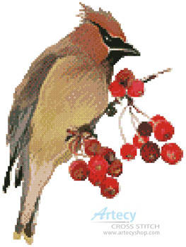 cross stitch pattern Waxwing