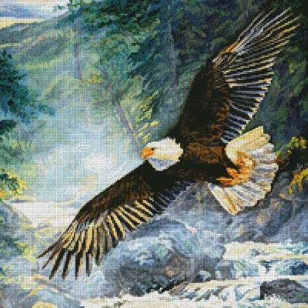 cross stitch pattern American Majesty (Crop)
