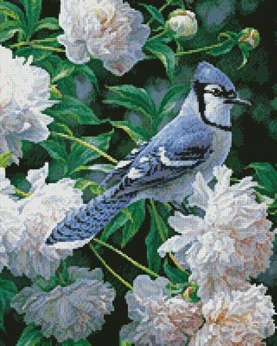 cross stitch pattern Blue Jay in Peonies (Crop)