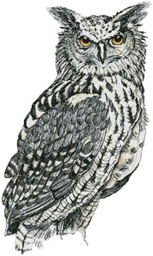 cross stitch pattern Eurasian Eagle Owl