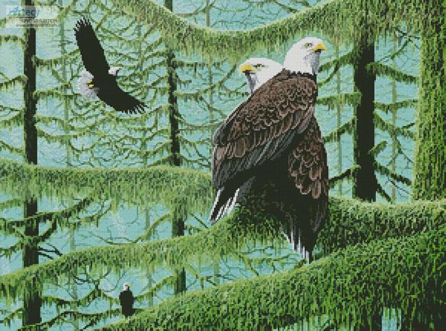 cross stitch pattern A Gathering of Eagles