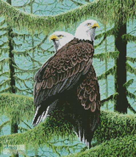 cross stitch pattern A Gathering of Eagles (Crop)