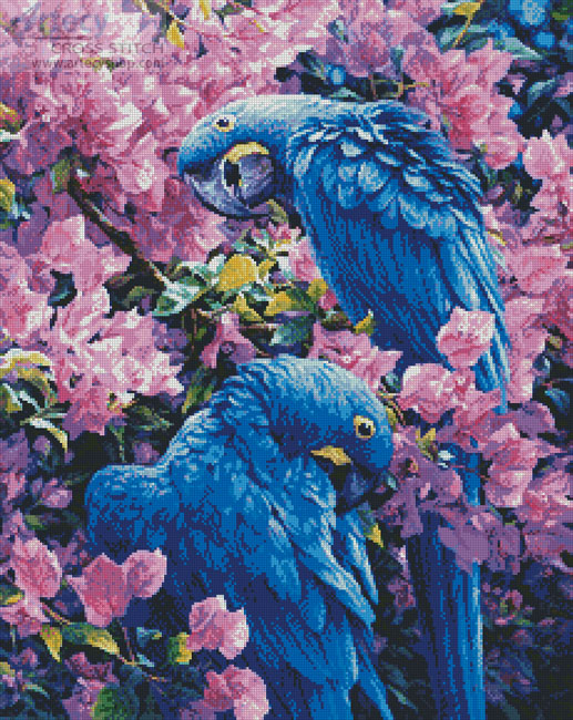 cross stitch pattern Hyacinth Macaws