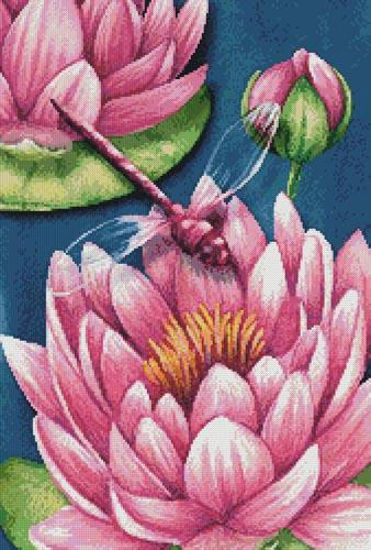 cross stitch pattern Pink Waterlilies