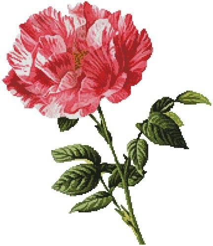 cross stitch pattern Pink Floral