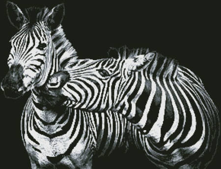 cross stitch pattern Black and White Zebras