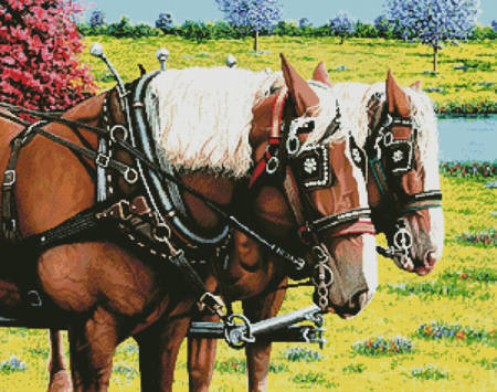 cross stitch pattern Clydesdales in the Meadow