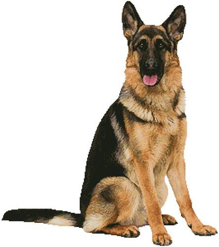 cross stitch pattern German Shepherd Sitting