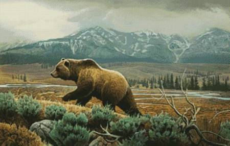 cross stitch pattern Grizzly