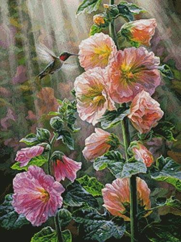 cross stitch pattern Ruby Throated Hummingbird  Hollyhocks