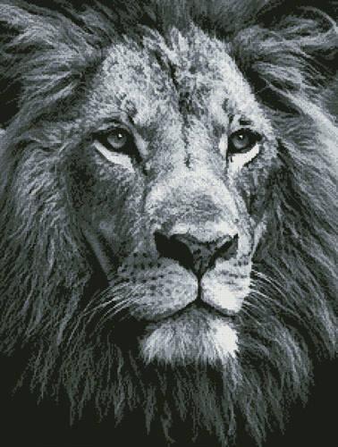 cross stitch pattern Lion Close up (Black  White)