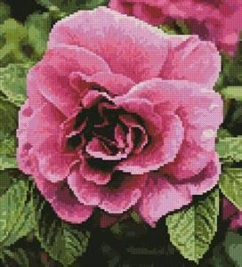 cross stitch pattern Pink Rose Photo (Crop)