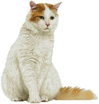 cross stitch pattern Turkish Van