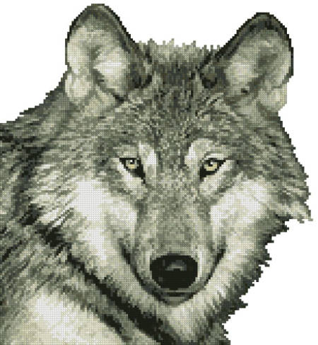 cross stitch pattern Wolf Close Up (No Background)