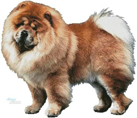 cross stitch pattern Chow Chow (No Background)