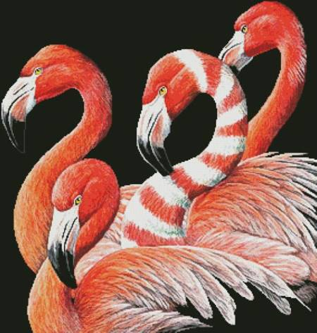 cross stitch pattern Four Flamingos