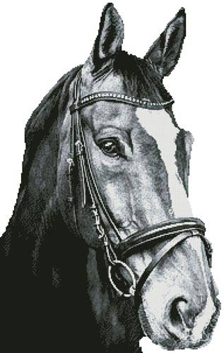 cross stitch pattern Horse Close Up 2 (BW) No BG