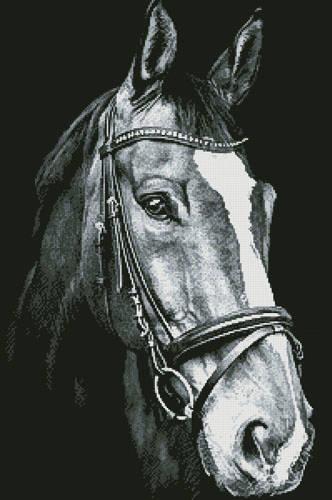 cross stitch pattern Horse Close Up 2 (Black and White)
