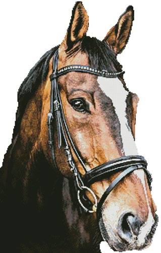 cross stitch pattern Horse Close Up 2 (No Back)