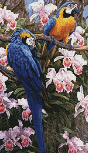 cross stitch pattern Jungle Majesty (Crop)