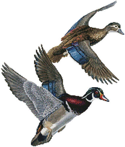 cross stitch pattern Lakeside Wood Ducks (No Background)