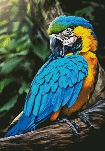 cross stitch pattern Macaw Profile