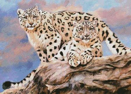 cross stitch pattern Snow Leopards on a Rock