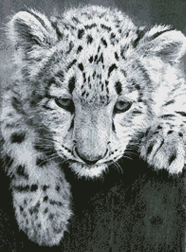 cross stitch pattern Snow Leopard Cub