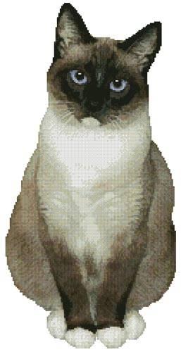 cross stitch pattern Snowshoe Cat