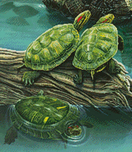 cross stitch pattern Turtle Pond (Crop)