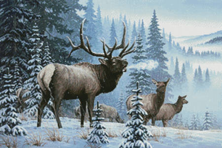 cross stitch pattern Winter Elk