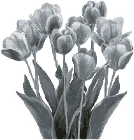 cross stitch pattern Black and White Tulips