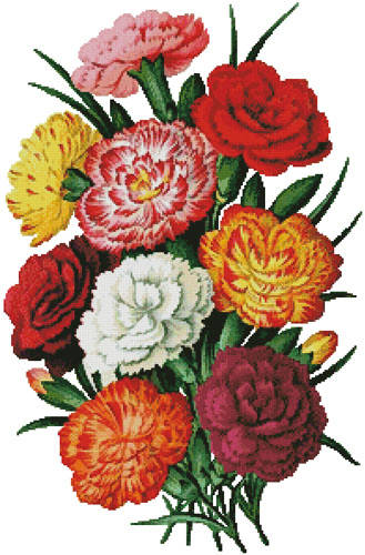 cross stitch pattern Carnations 3