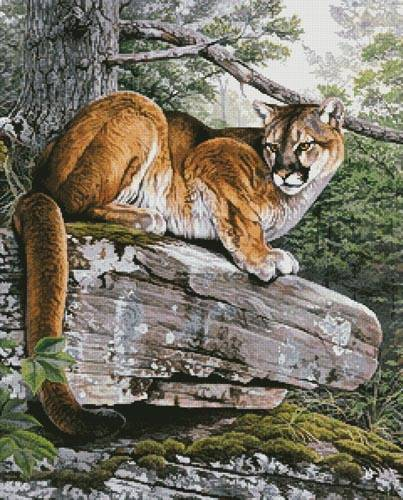 cross stitch pattern Eastern Cougar