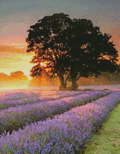 cross stitch pattern Mayfair Lavender at Sunrise (Crop)